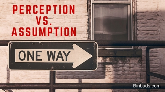 Perceptionvs.assumption